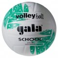 volejball-school-colour.jpg